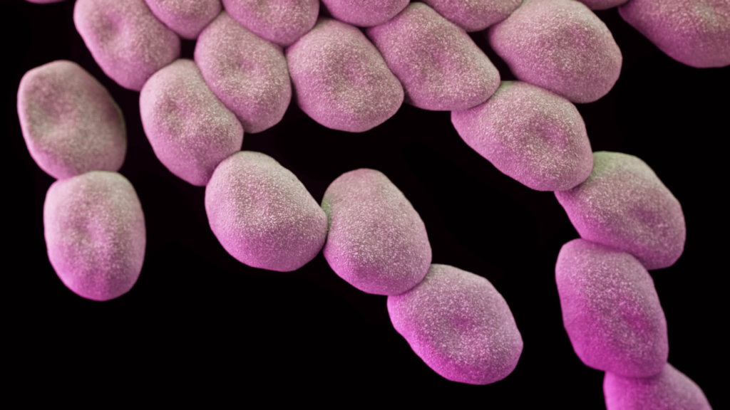Wanted: better policies and incentives to revitalize R&D for new antimicrobial drugs