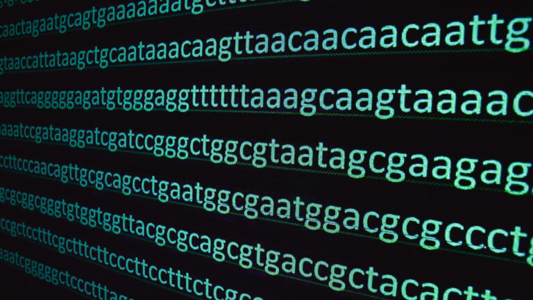 New CRISPR tool has the potential to correct almost all disease-causing DNA glitches, scientists report