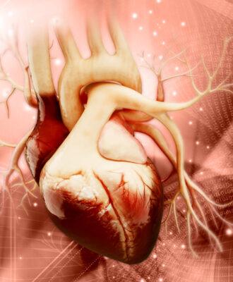 heart-cholesterol