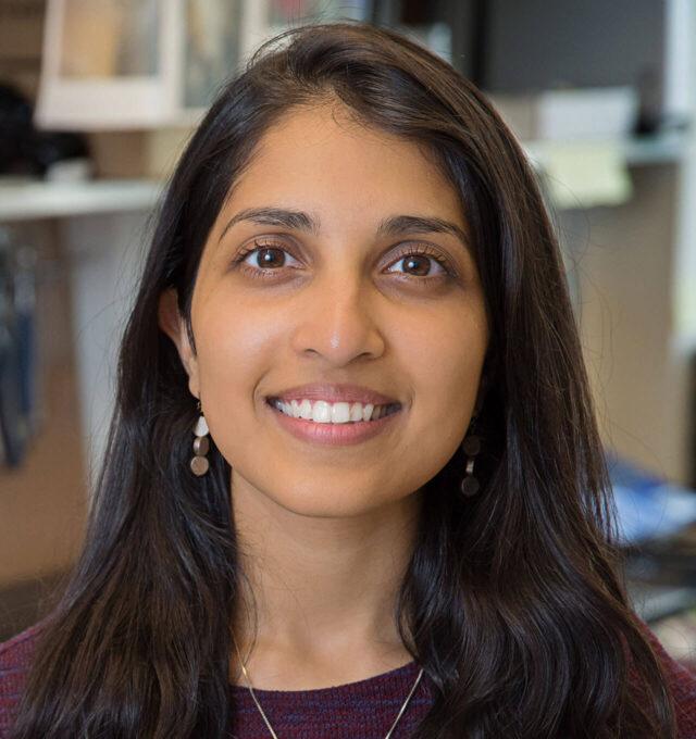 Ritu Raman, Ph.D.