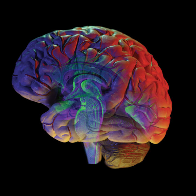 Colorful brain on black background