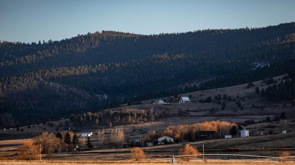 Montana COVID