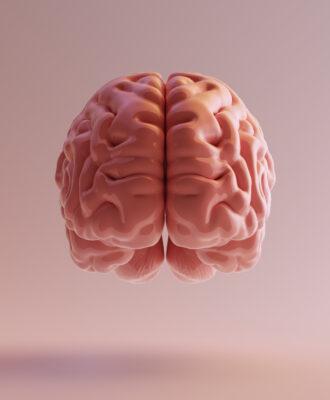 3d pink brain