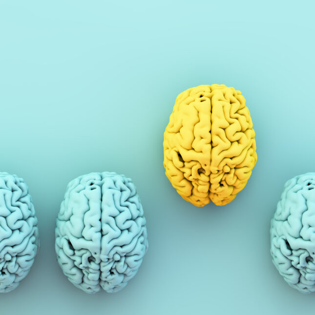 yellow and blue brains