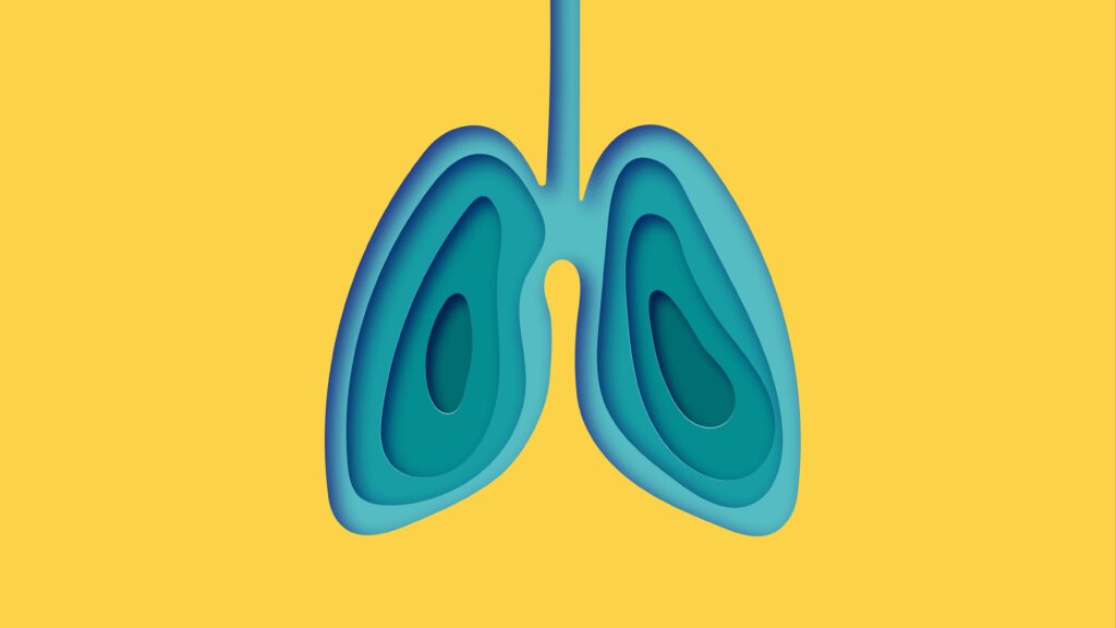 lung 1024x576.'