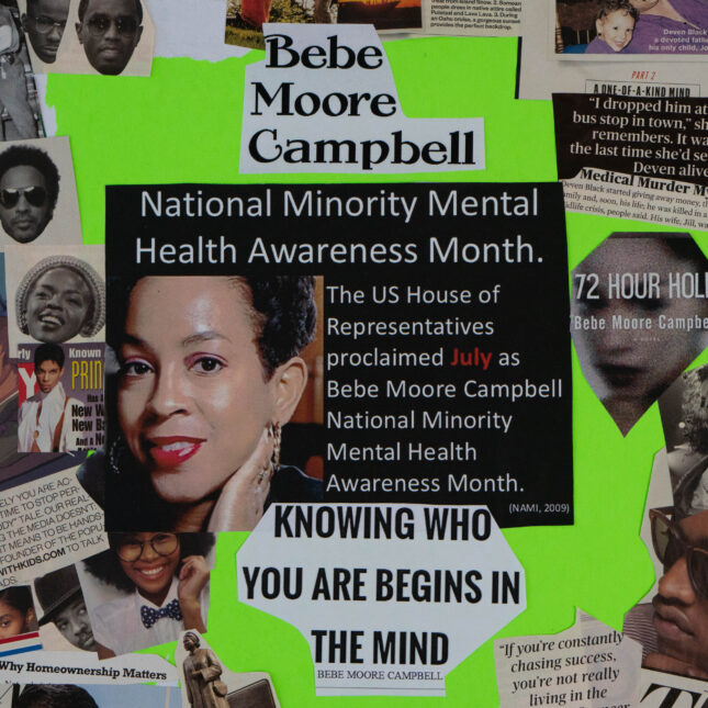 Bebe Moore Campbell collage