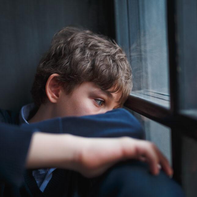 boy in blue at window
