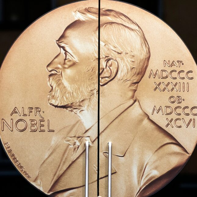 Women creators of gene 'scissors' clinch chemistry Nobel