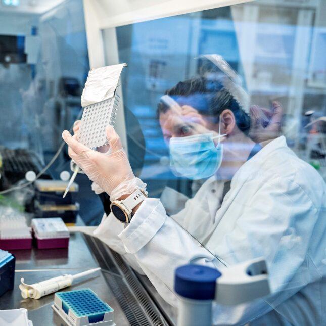 B.1.1.7 research coronavirus variants