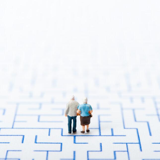 navigating dementia care