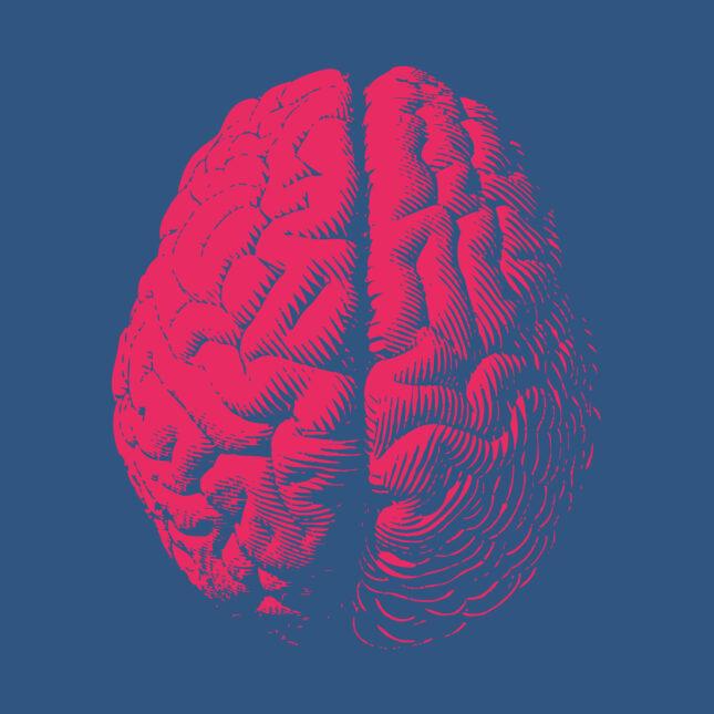 red brain illo