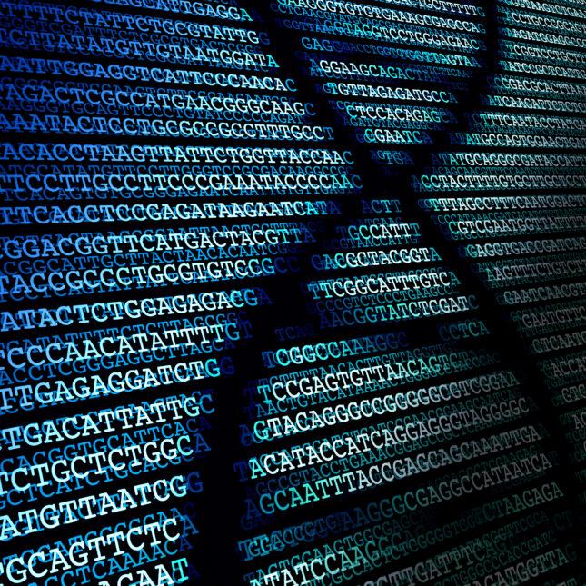 genetic sequencing/DNA