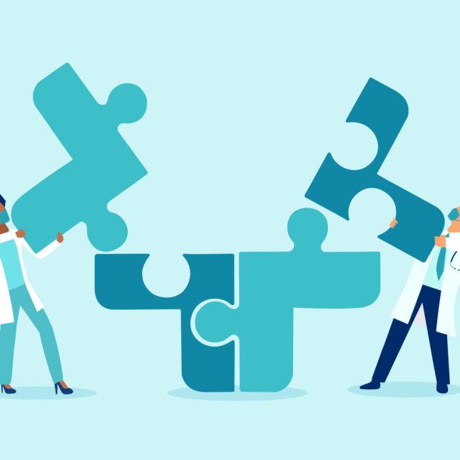 team care puzzle