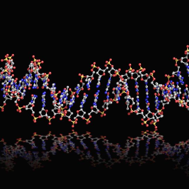 red & blue DNA strand