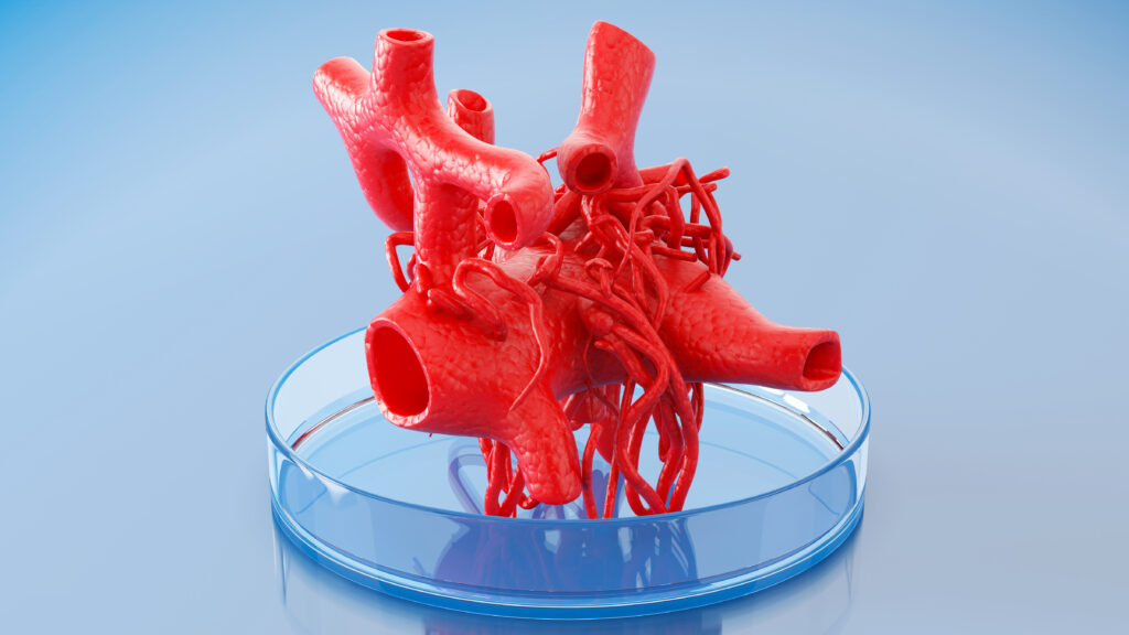 FDA inaction is holding back 3D bioprinting of transplantable organs - STAT