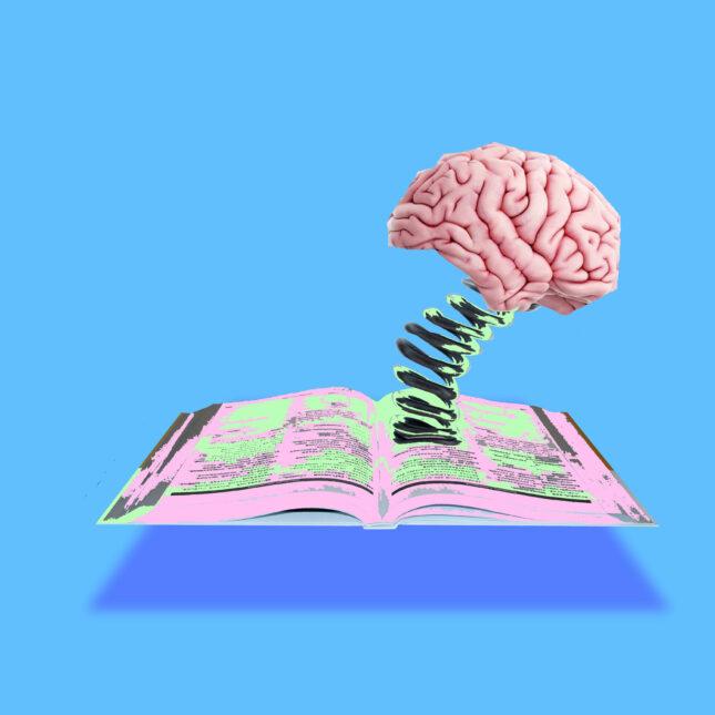 brain book illo