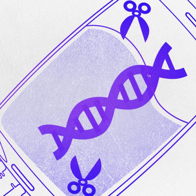 CRISPR IV