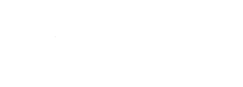 NPC Logo White