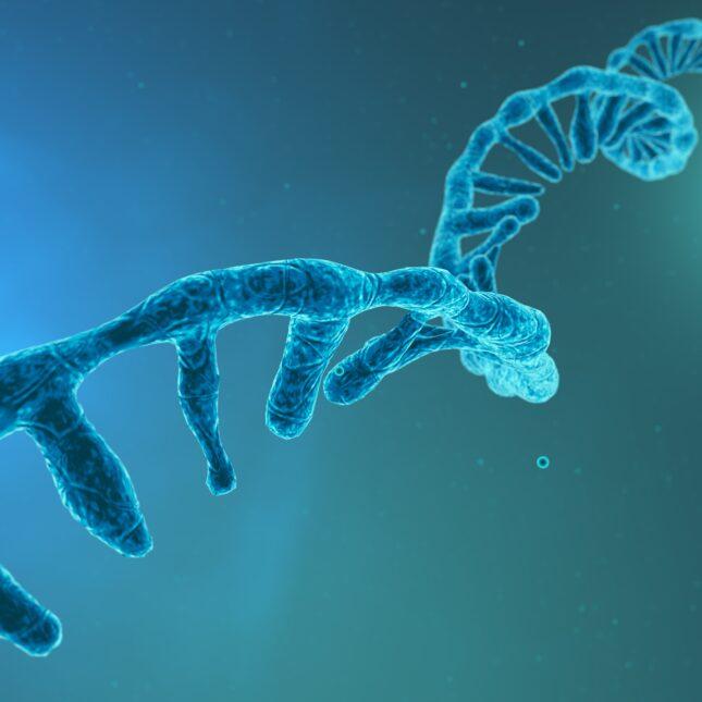 Blue RNA strand