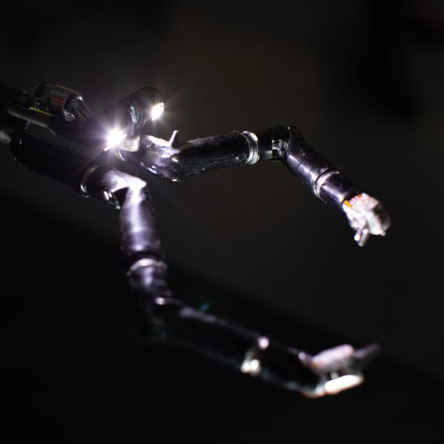 Vicarious Robot