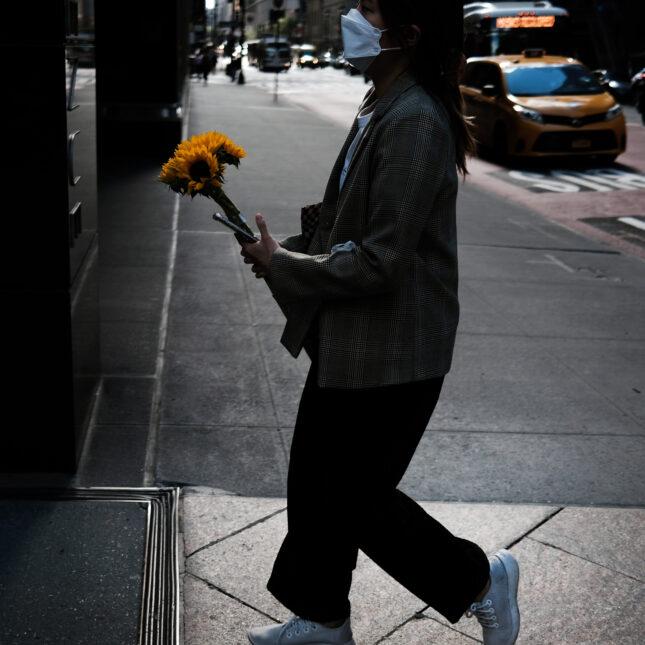 Walking w/ sunflowers